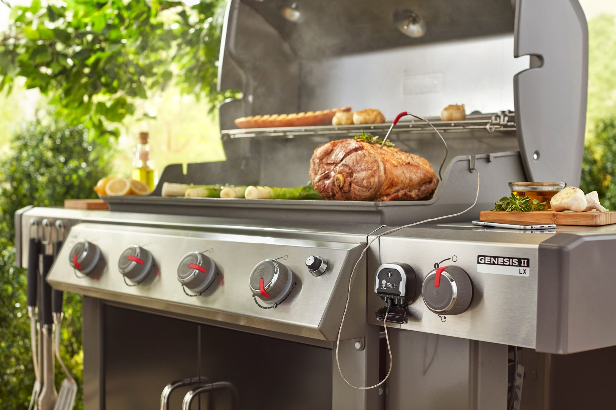 Convert Outdoor Gourmet Grill To Natural Gas